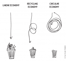 Circular economy vs linear